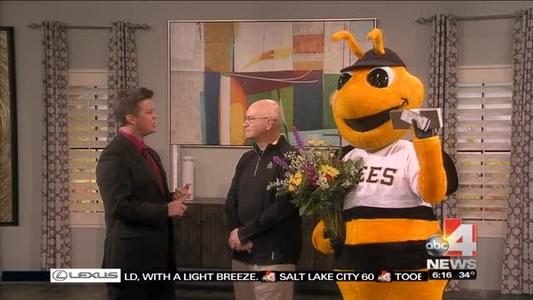 Bumble the Bee Spreading Valentine's Day Love_-3988546359206591449