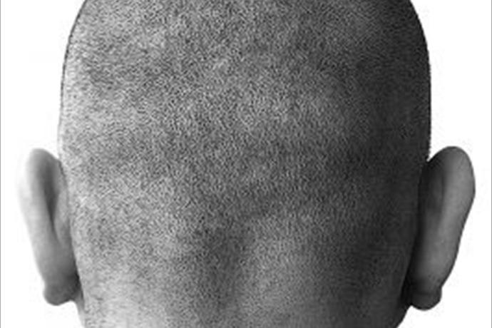 bald man_2228666775251141378