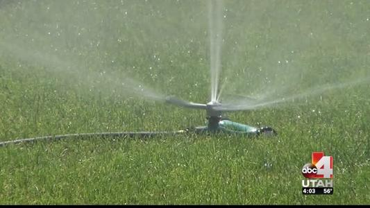 Dont Water your lawn_-8063304606726076946