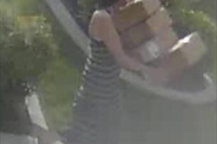 SJ package thief _-804933561654292790