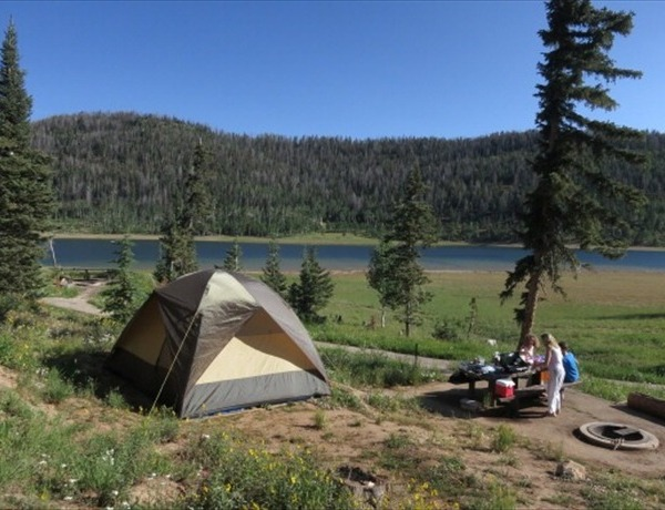 camping _-2277703866548074453