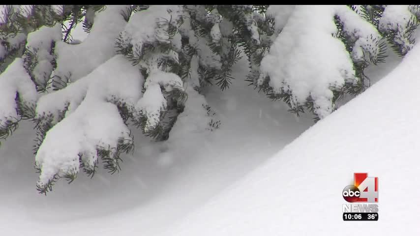 Snow Pack_20910046-159532