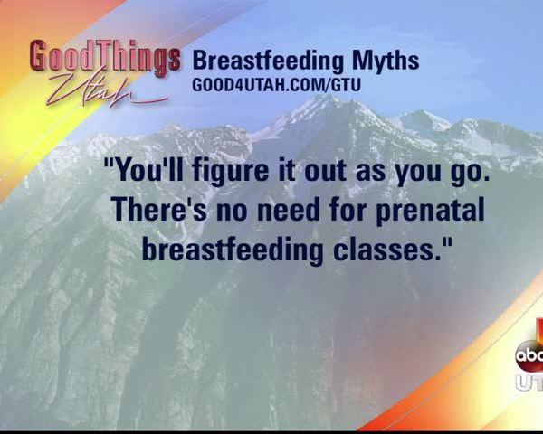 Lactation link breastfeeding help_20160616154501