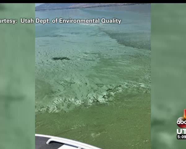 Toxic algae closes Utah Lake_96500721-159532