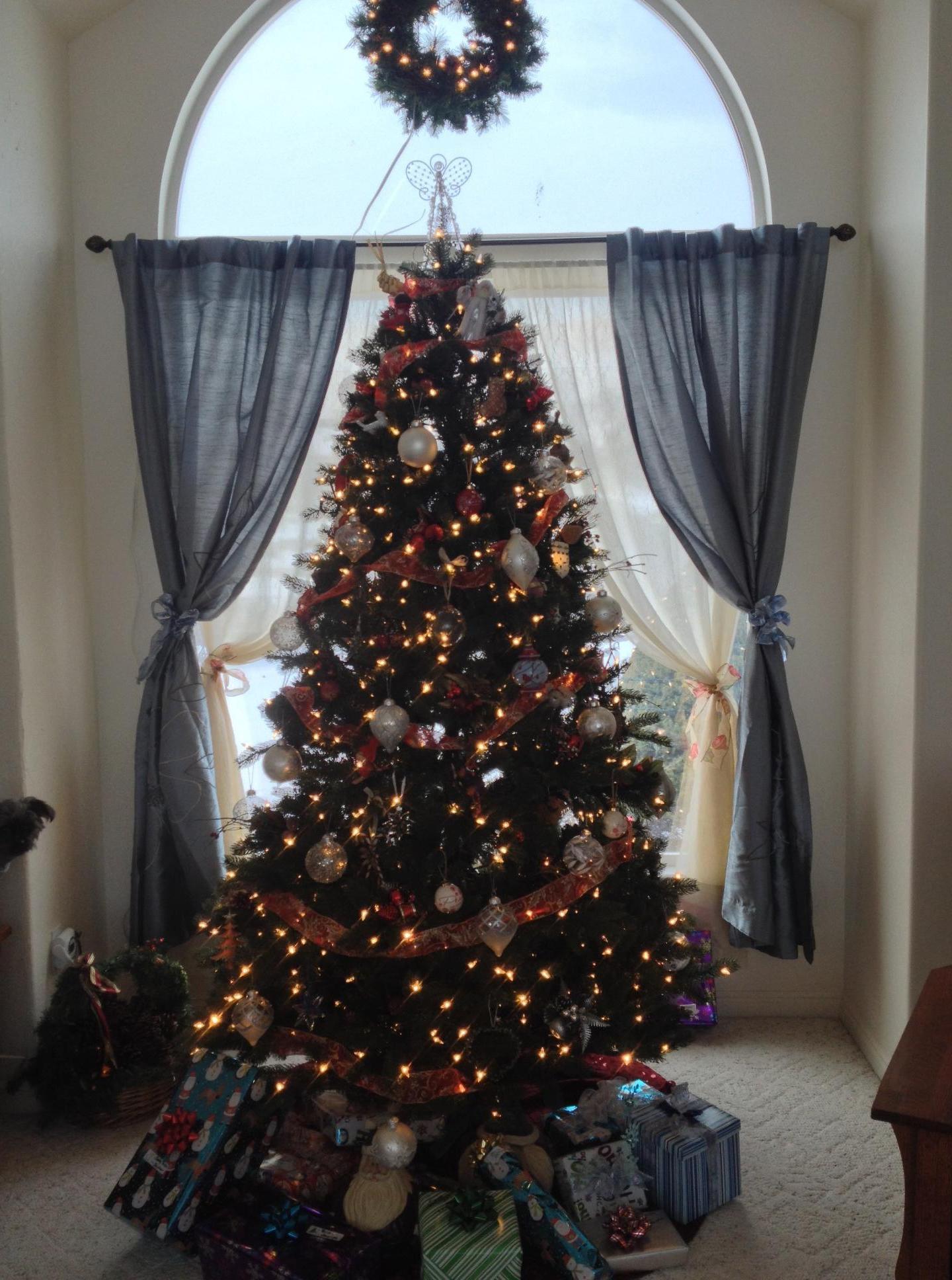 Christmas Tree Display_1475729564265.jpg
