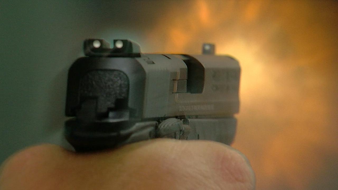 GUN%20PHOTO_1478720203393.jpg