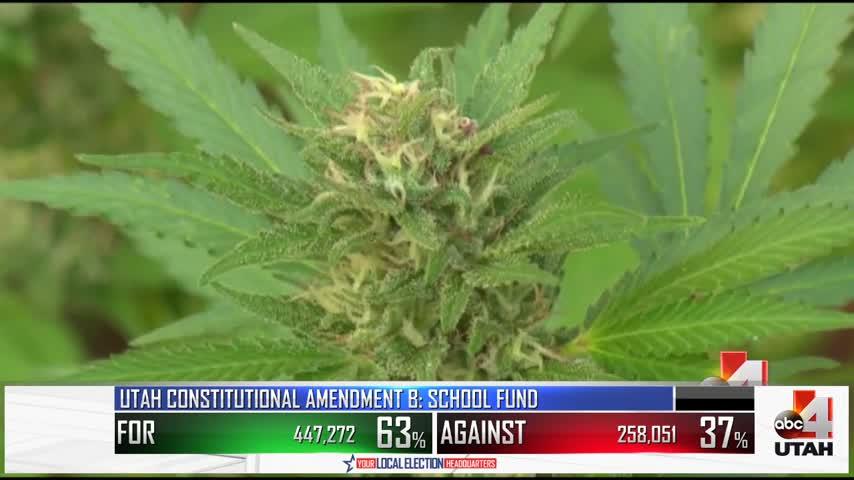 Update on states outside UT, medical marijuana legalization