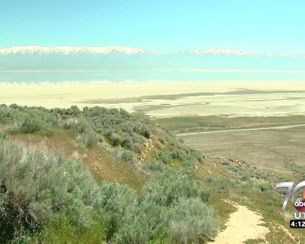 Antelope Island rises from the ashes one year after evastati_08577709