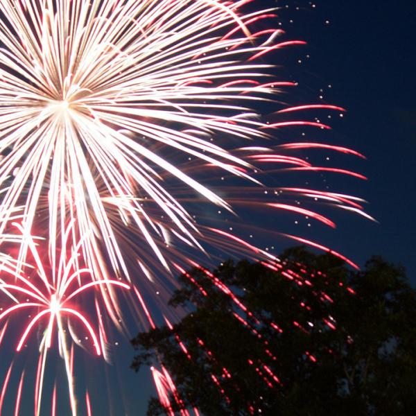 fireworks___.png