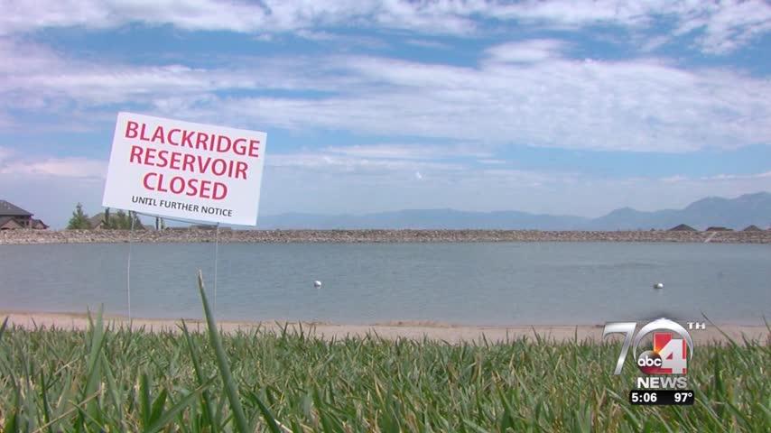 Toxic algae at Blackridge Reservoir?