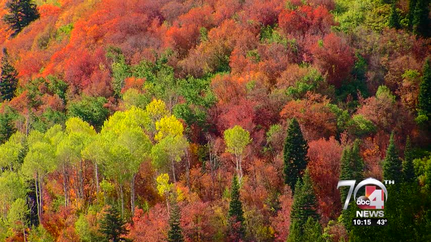 Where to find Utah-s most scenic fall foliage_96947081