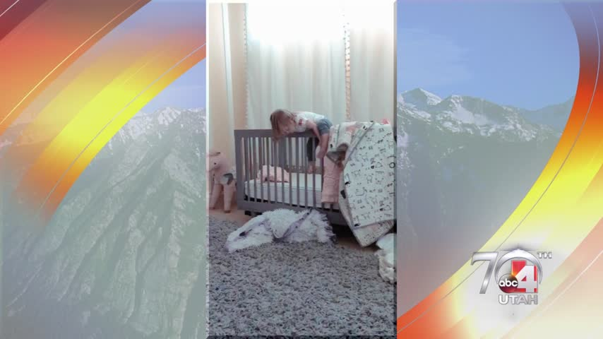 What do you do when your child won't stay in their crib?