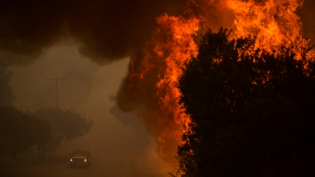 WILDFIRE: Are you prepared if you have to evacuate?