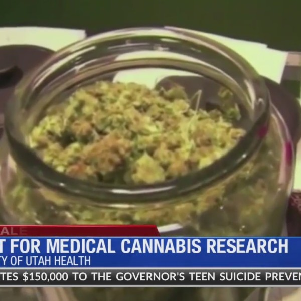 Grant_for_Medical_Cannabis_Research_0_20180426023330