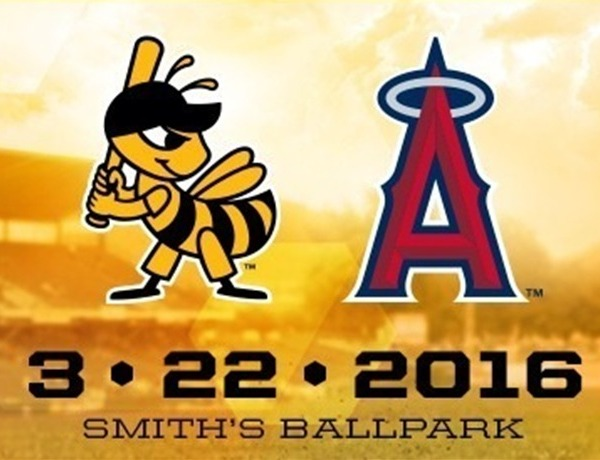 salt lake bees_-308307538926220226