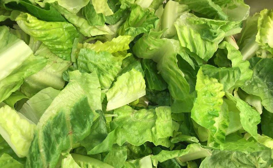 lettuce 2_1523920168174.JPG.jpg