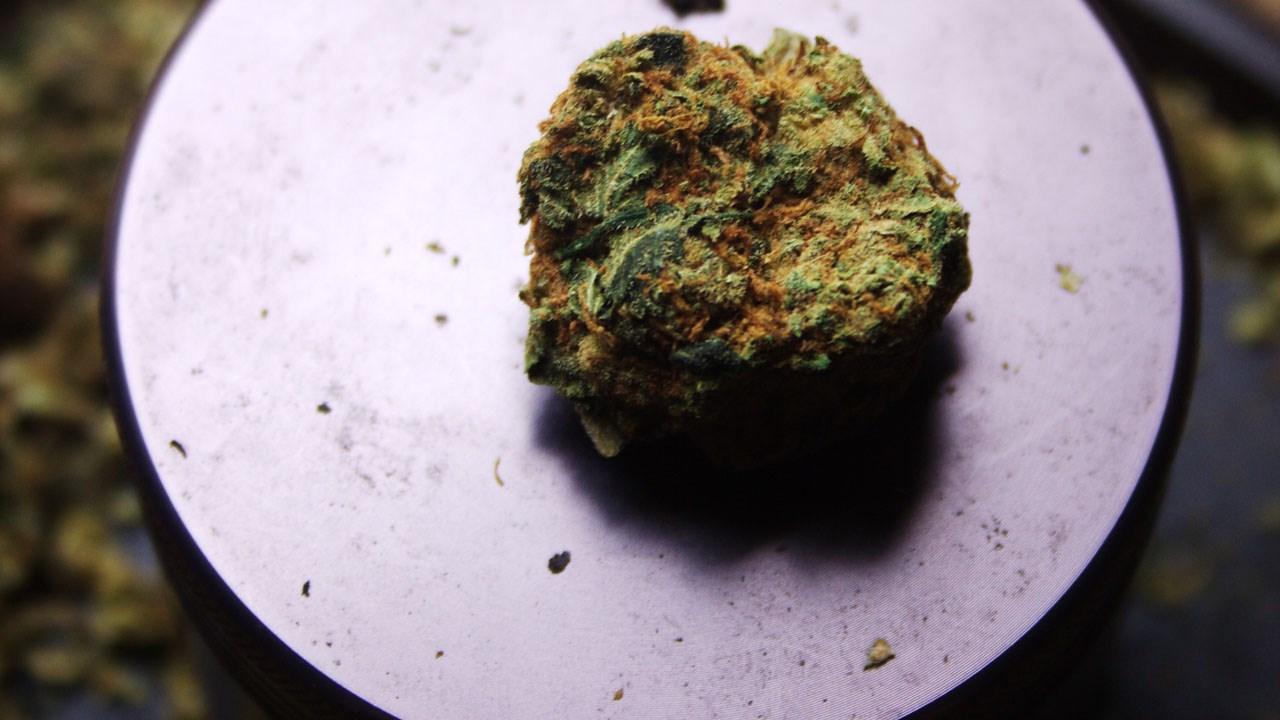 marijuana_pot_cannabis_weed_.jpg
