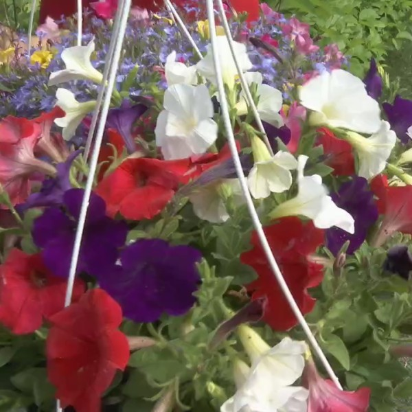 Millcreek Garden Memorial Day