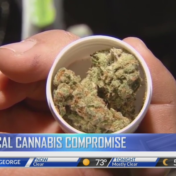Stakeholders unveil medical cannabis compromise bill