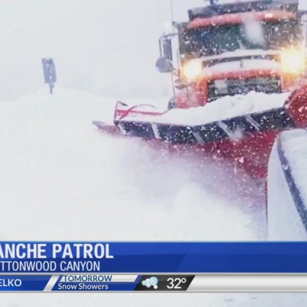 Avalanche Patrol Alana