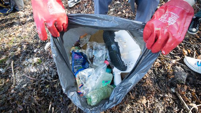 litter clean up_1552386029401.jpg_76913915_ver1.0_640_360_1552408873969.jpg.jpg