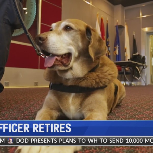 Max takes a bow: officer ends career