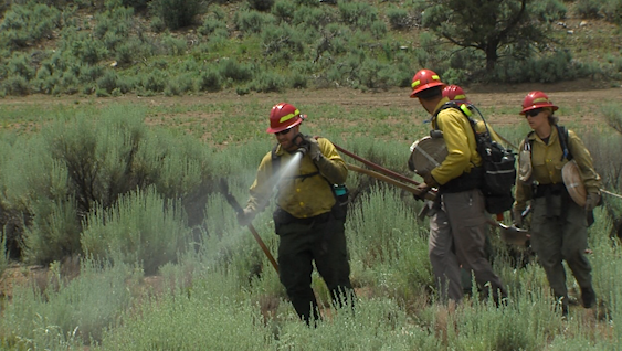 Washington County fire crews train for upcoming fire season, likely the worst in over a decade, officials say