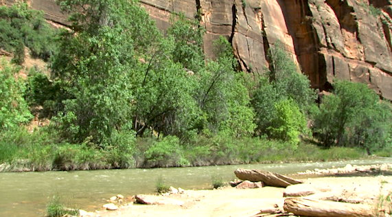 12-year-old boy, 2 adults saved in swift water rescue at Zion National Park