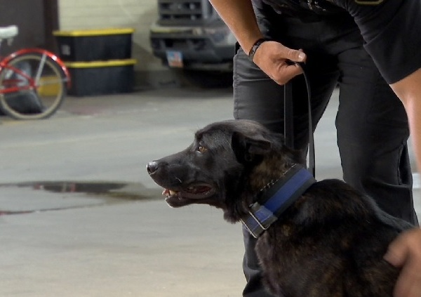 Behind the Badge | ABC 4