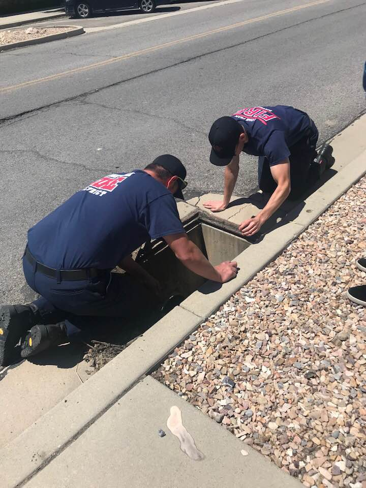 lone peak fire being duckling rescue operation
