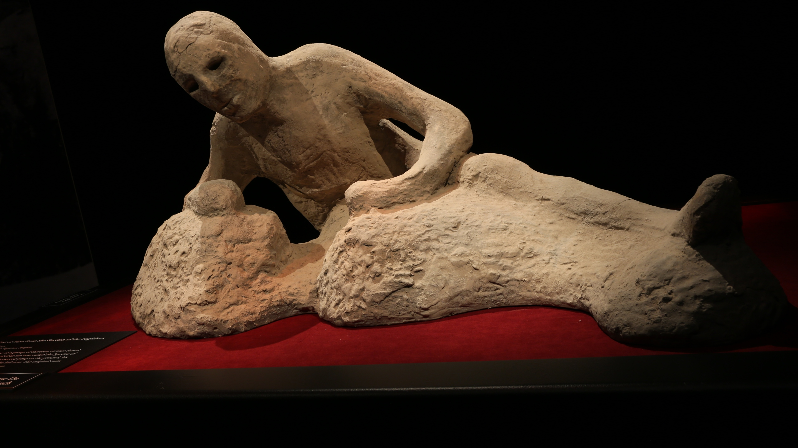 See the victims of Pompeii face to face at new Leonardo ...
