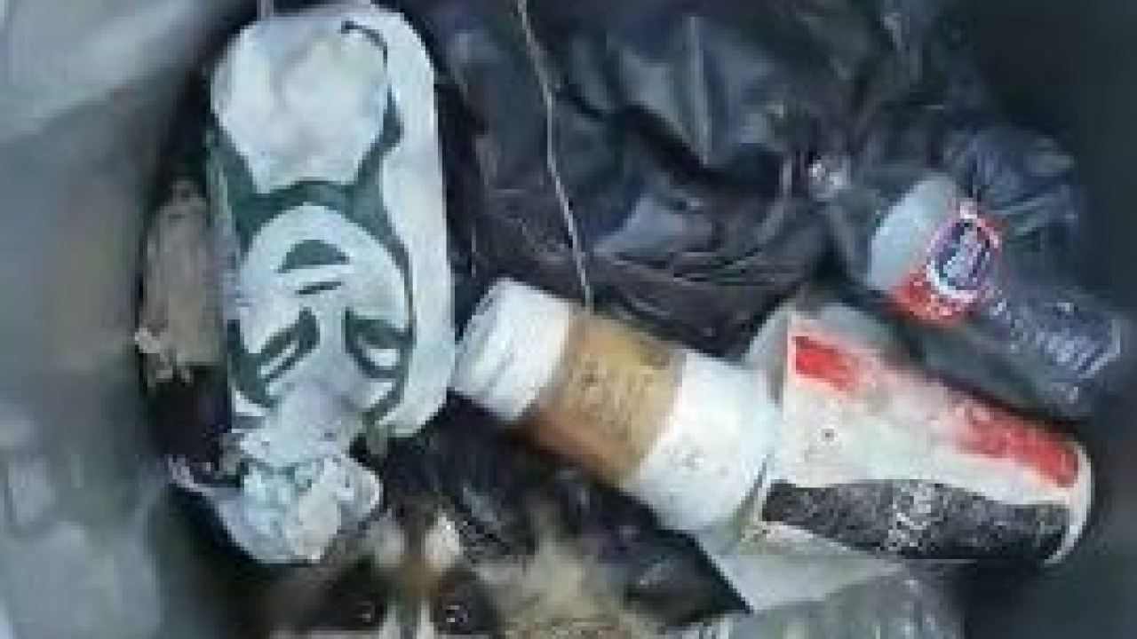 Raccoon rescued after getting stuck in trash can at park in South Jordan