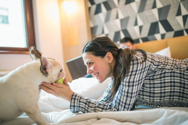 """Some hotels may call themselves """"pet-friendly,"""" but keep in mind, there might be fees, size limits and rules that you cannot leave your dog unaccompanied."""